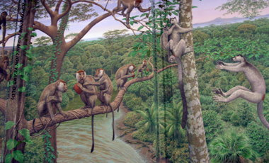 Early Primates Mural