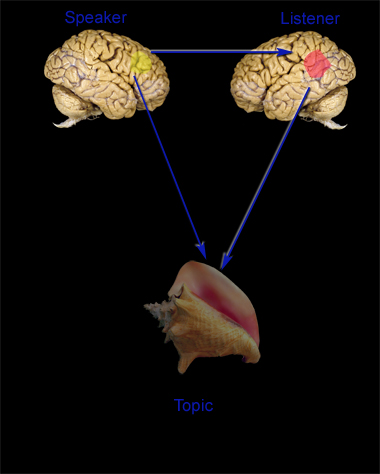Attention_triplet_in_the_brain